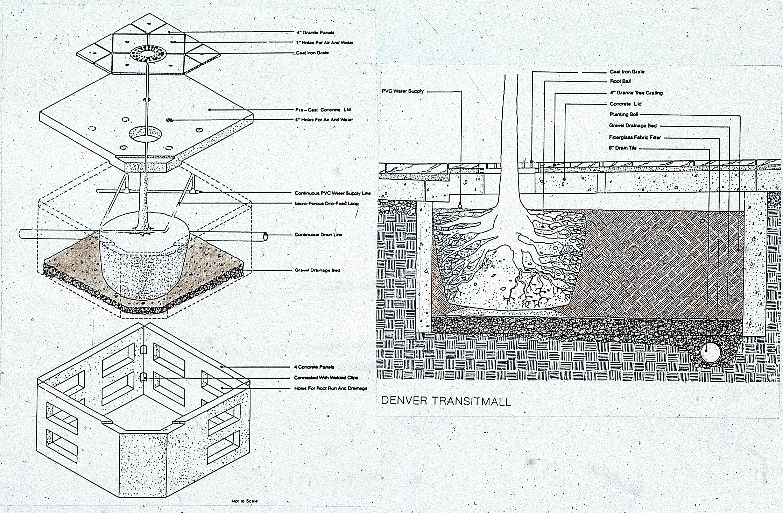 16th Street planting pit detail. Credit: © OLIN