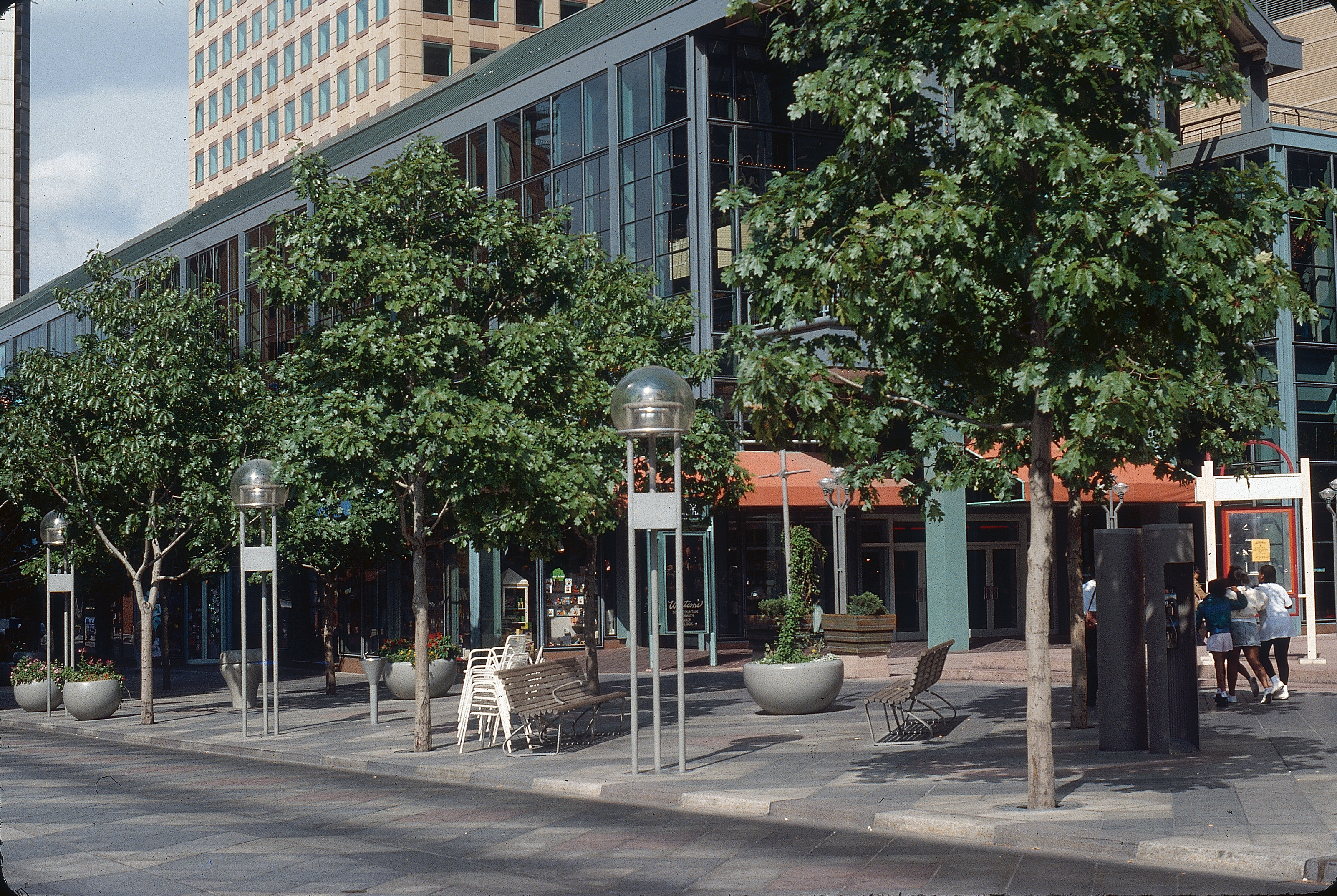 The 16th Street Mall trees in 1988. Photo credit: Tom Perry