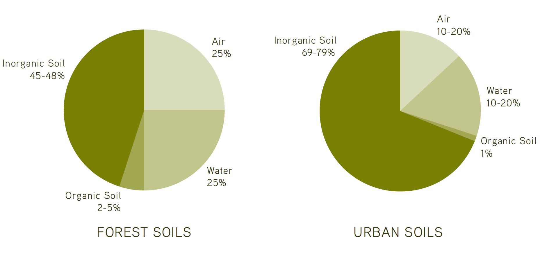 Forest Soil Versus Urban Soil 2014