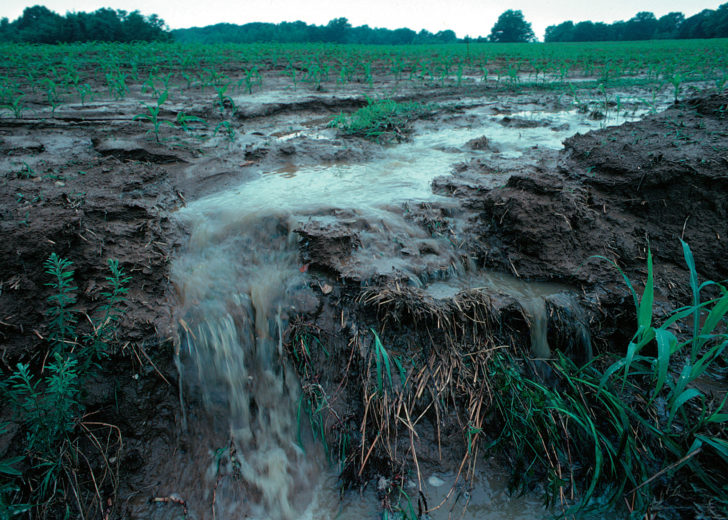 Non-point source pollution_Runoff_of_soil_&_fertilizer