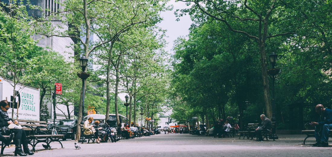 Treating Trees as Actual Infrastructure