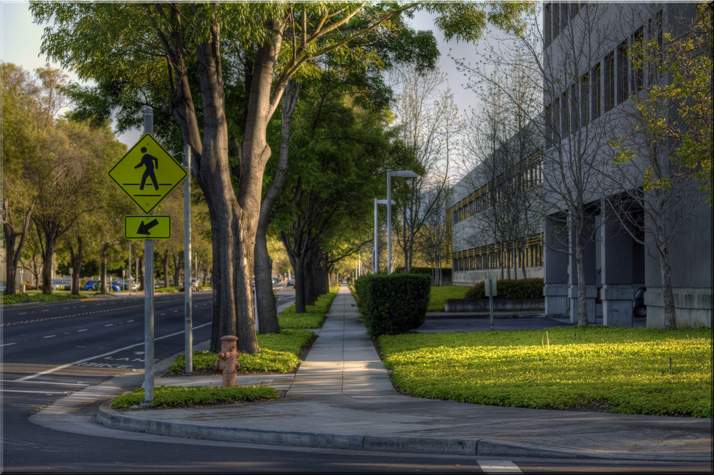 Palo Alto, CA Street - Jill Clardy
