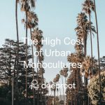 The High Cost of Urban Monocultures