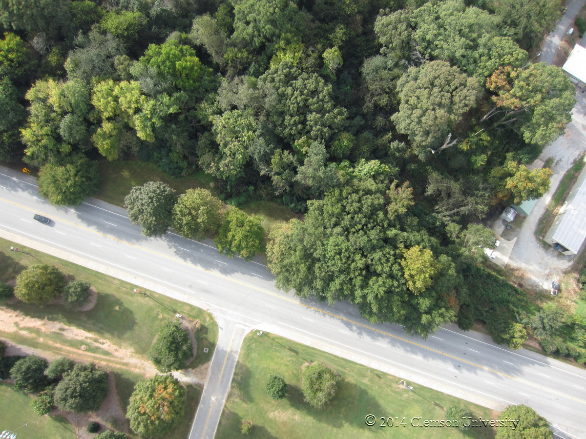 Drone Applications In The Urban Forest