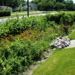 3 Questions About Bioretention Soils and Infiltration