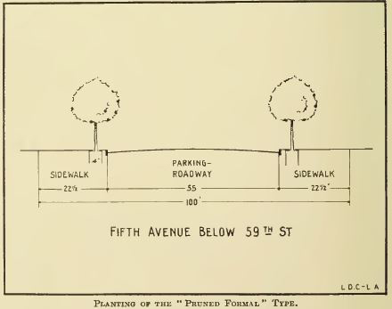 1916_Cox NYC_Fifth Ave Below 59th St