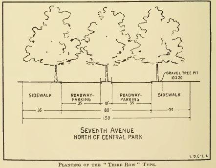 1916_Cox NYC_Third Row Typology