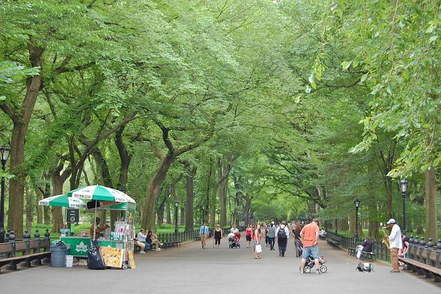 David McSpadden - Central Park Mall