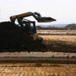 Reusing Existing Urban Soil for Planting