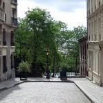 Rethinking Maintenance of Urban Trees