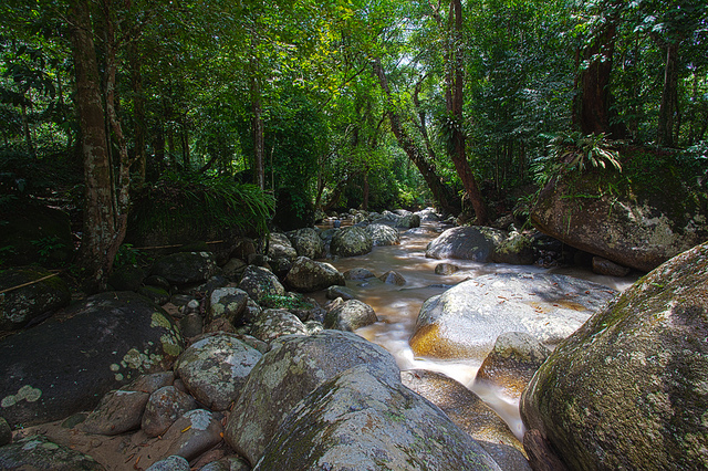 Rivers, streams, lakes and the earth's biomes