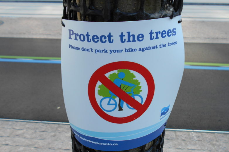 Queens Quay protect the trees