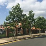 Multi-Agency Green Infrastructure Streetscape Silva Cell Case Study