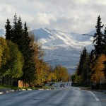 """""""It's Different Here"""" Maria D'Agostino on Alaskan Urban Forestry"""