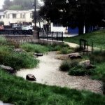 What Can I Do to Keep My Yard's Rainwater Out of Streams?