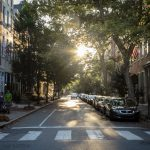 Trees: A Shared Good with Unequal Access