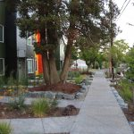 A multi-pronged approach to stormwater management