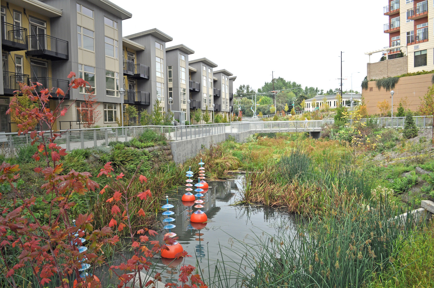 Stormwater Management Deeproot Blog