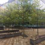 Leeds' Urban Renewal Brings Trees to the City CentreSilva Cell Case Study
