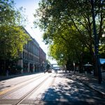Trees and sidewalks: A strategic approach to conflicts