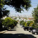 Treequake: A seismic shift in San Francisco urban forestry