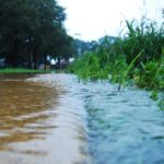 Rethinking Runoff: How Stormwater Can be Harnessed for Better Design