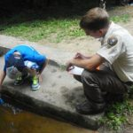 Power to the people: getting involved in citizen science