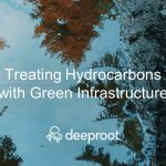 Treating Hydrocarbons with Green Infrastructure