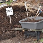 Compost in Green Infrastructure Soil: Too Much of a Good Thing? Part I.