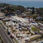 Silva Cells in Del Mar California Underground Bioretention Case Study