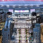Silva Cells' Star Performance at Wembley: A Case Study
