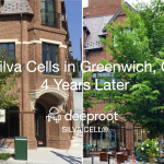 Silva Cells in Greenwich, CT 4 Years Later – Case Study