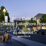 Silva Cells at Historic Lakeshore Road, Oakville Ontario – Case Study