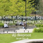 "Silva Cell ""Leeds"" the way in Sovereign Square: Case Study"