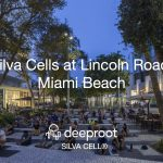 Lincoln Road, Miami Beach: A Silva Cell Case Study: 10 Years of Success