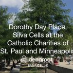 Dorothy Day Place, Silva Cells at the Catholic Charities of St. Paul: Case Study