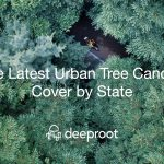 The Latest Urban Tree Canopy Cover by State