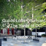 Guilds Lofts Courtyard—The Yards of DC: Silva Cell Case Study