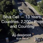Silva Cell® 13 Years, 21 Countries, 2,200+ Projects and Counting