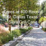 Trees at 400 Record St. Dallas Texas: Silva Cell Case Study