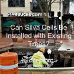 Silva Cells Can Be Installed with (around) Existing Trees – Part I