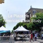 La Plaza De Las Americas: A Silva Cell Case Study