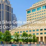 Using Silva Cells with Green Roofs and On-Structure Applications