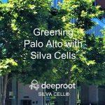 Greening Palo Alto: A Silva Cell Case Study