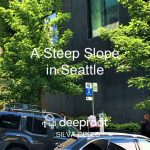 A Steep Slope in Seattle: A Silva Cell Case Study