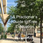 A Practitioner's Guide to Tree Evaluation