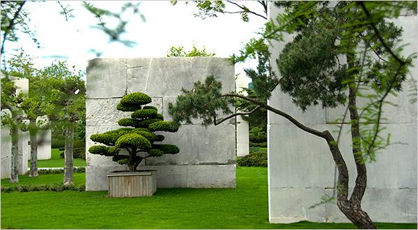 Actual Tree Museum Opens Near Zurich Deeproot Blog